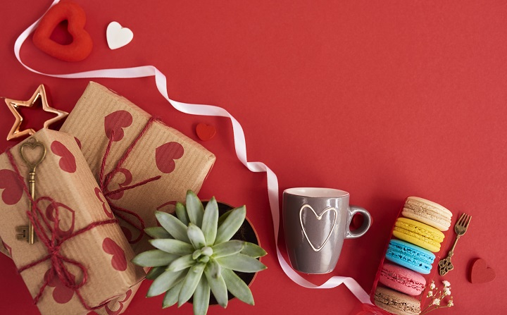 Why Choose a Succulent as a Gift
